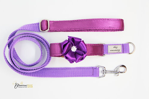 Small purple collar with a flower