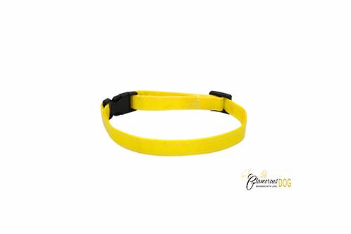 Marking collar yellow