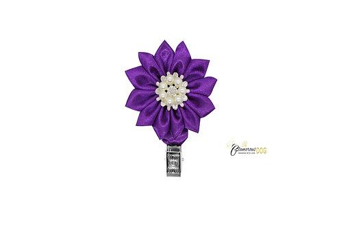 Deluxe dog show clip - purple