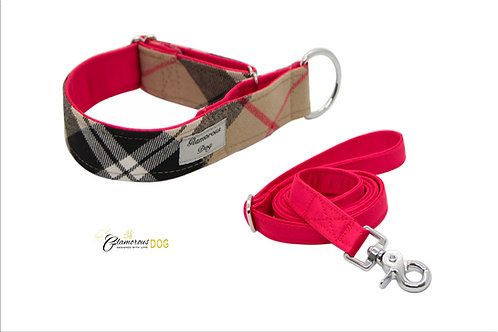 Adjustable cube collar lined with red with the possibility of a guide