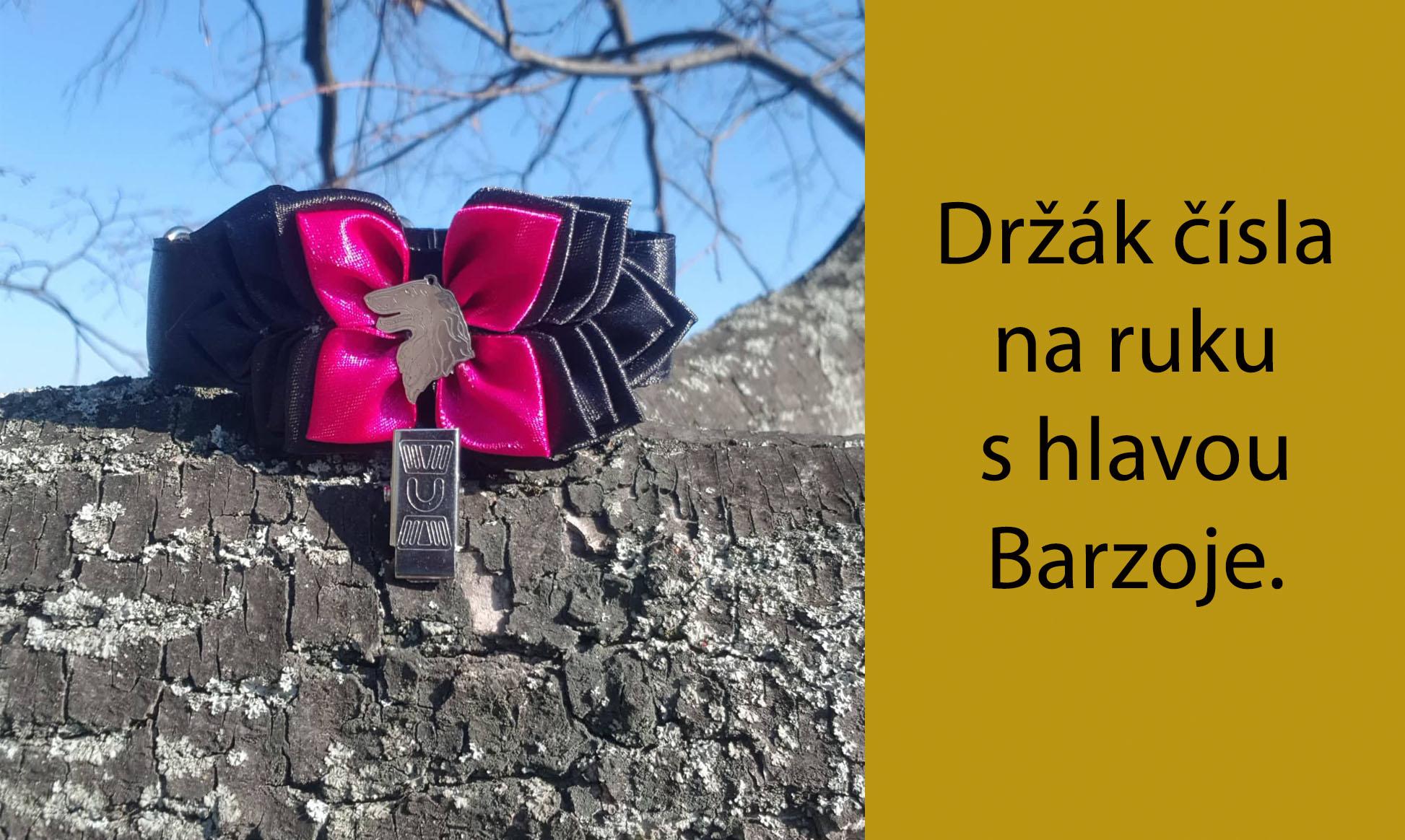 ANH Barzoj