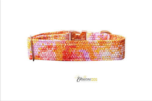 Adjustable collar orange snake with the possibility of a leash