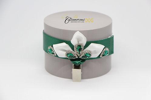 Princess's dream in cadmium green