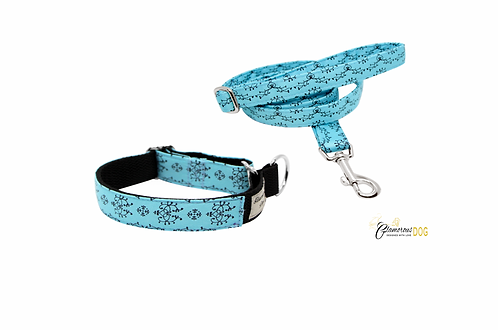 Turquoise collar with black
