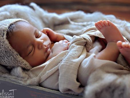 legend | orlando newborn portraits
