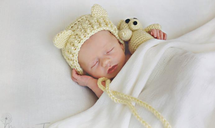 avery| orlando newborn pictures