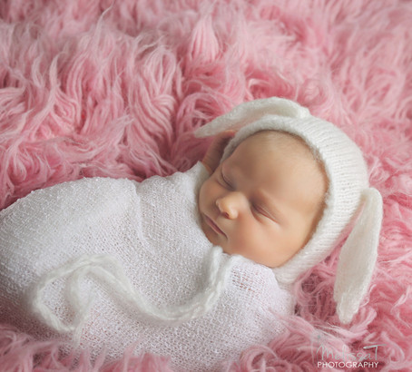 snuggly bunny | lake mary newborn portraits