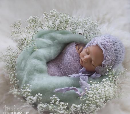 angel| orlando newborn photographer