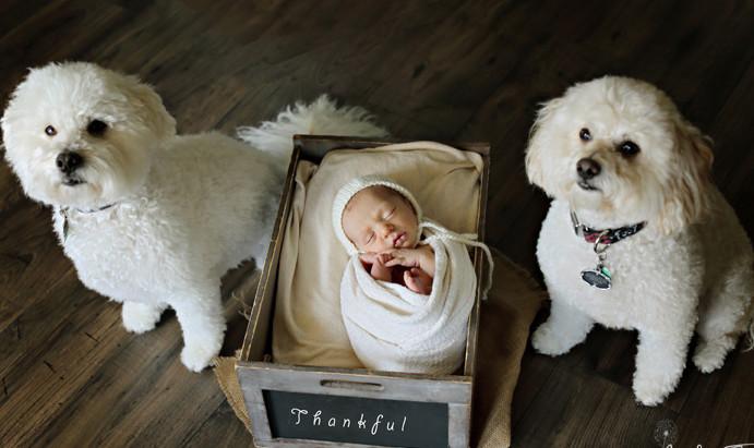 Precious Jordan  newborn photographer