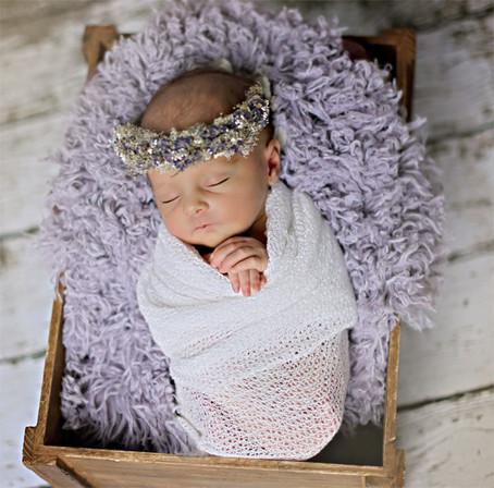 Evelynn | Winter Park Newborn Photographer