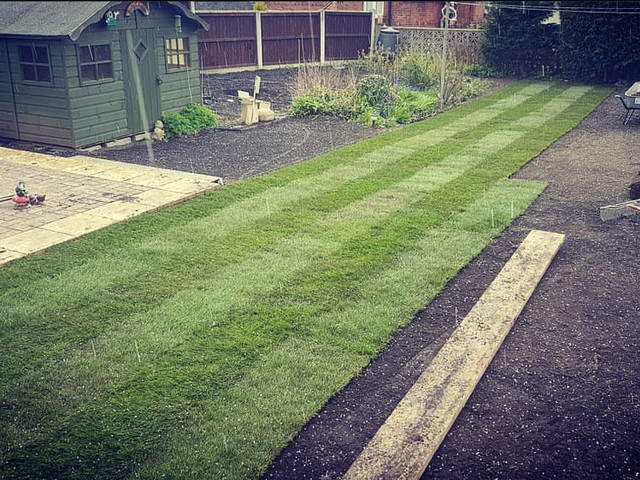 Creation Of A New Lawn