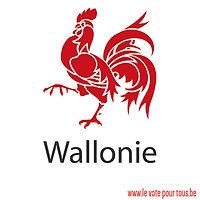 illu-o4-a-region_wallonne-internet.jpg