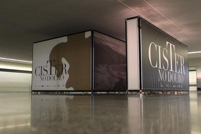 Cister no Douro