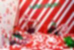 DSC_0063_web.jpg