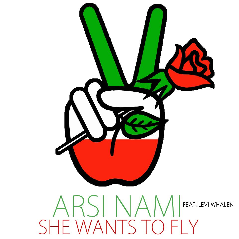 She wants to fly single cover.jpg