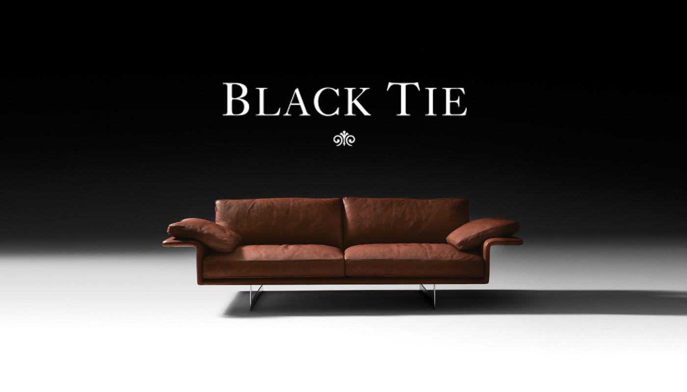 canap s haut de gamme. Black Bedroom Furniture Sets. Home Design Ideas