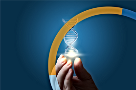 RMP_DNA.png