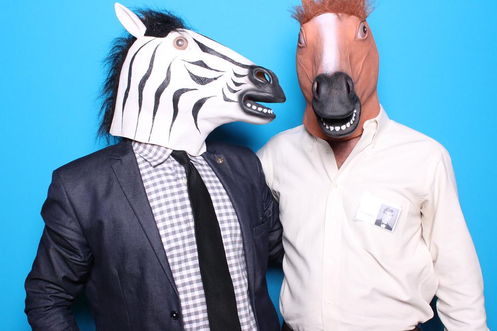 Talking horse heads