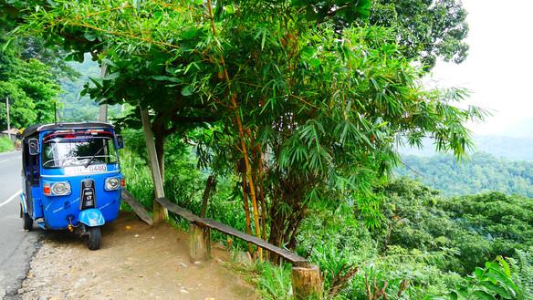 soya - Sri Lanka variety shop -