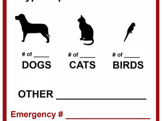 Disaster Preparedness: Pets
