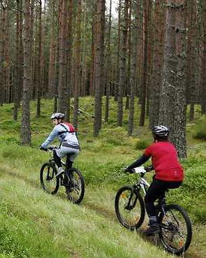 mountainbiking_1.jpeg
