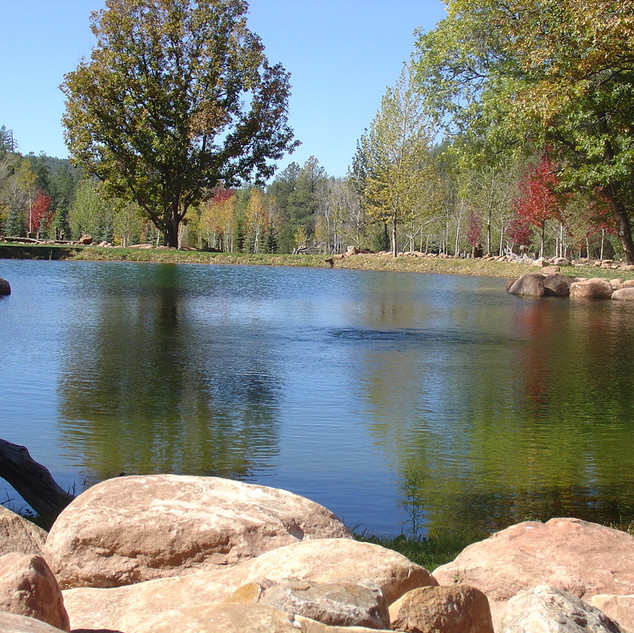 Fall Colors In Christopher Creek