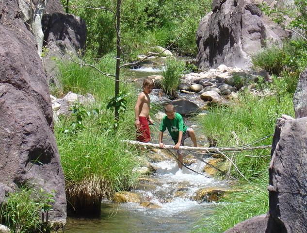 Summer Fun On The Creek