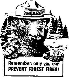 smokeybear.jpg