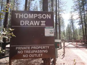 Thompsondraw11.jpg