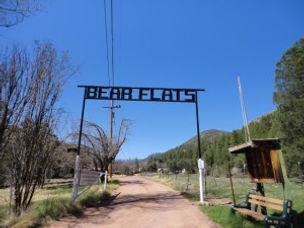 bearflat.jpg