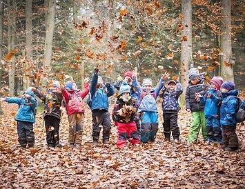 forest school ecole du dehors les enfants buissonniers