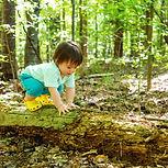 atelier nature 2-4 ans les enfants buissonniers couzon au mont d'or lyon