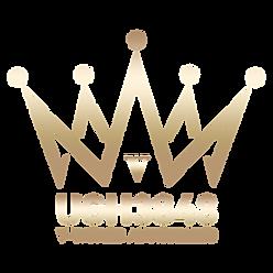 V-World UGH3848 Logo FV.png