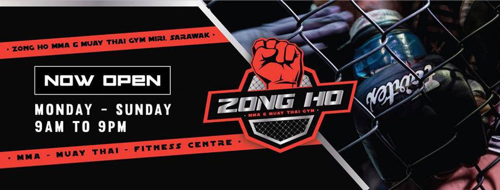 Zong Ho Header.jpg