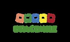 Logo Bracemile.png