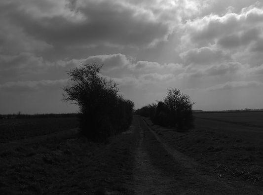 salt road.jpg