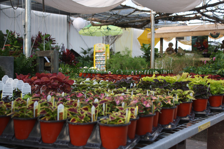 Our Garden Center and Greenhouses are Closed for the Season See you in the Spring