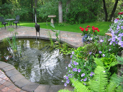 Alternative Landscaping