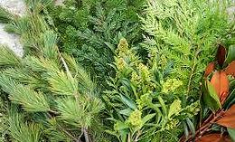 Christmas Greens, DIY,Wreaths