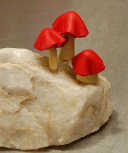 Mushrooms on Marble