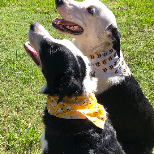 Bee Bandanas for Your Pets