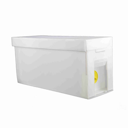 Corflute Nucleus Box