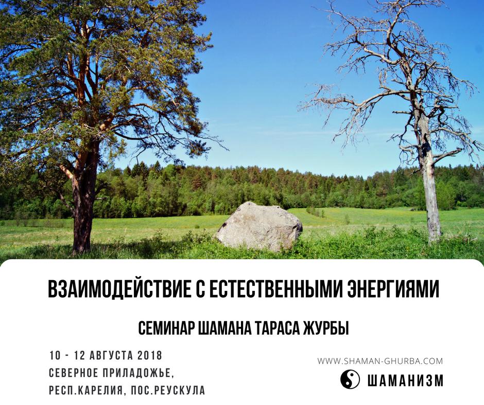 семинар на природе, семинар карелия, семинары спб, шаманский семинар, шаманские практики, Тарас Журба, взаимодействие с природой