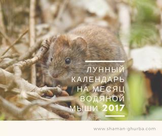 Лунный календарь на месяц Водяной Мыши 2017-2018г.
