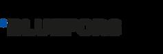logo_bluefors_.png