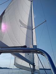 Sails open.jpg