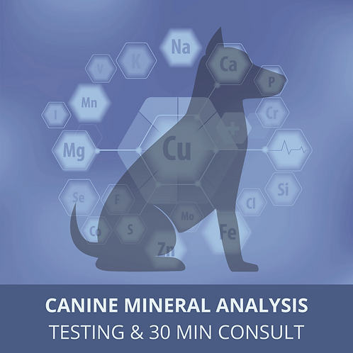 Canine Mineral Testing and 30 Minute Consult