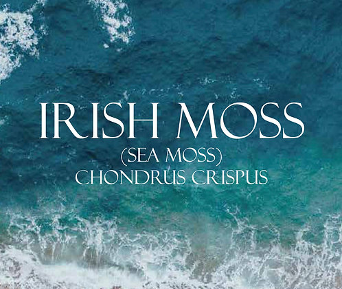 SEAMOSS - Atlantic Irish Moss 4oz.