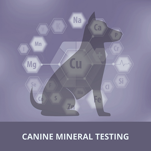 Canine Mineral Testing