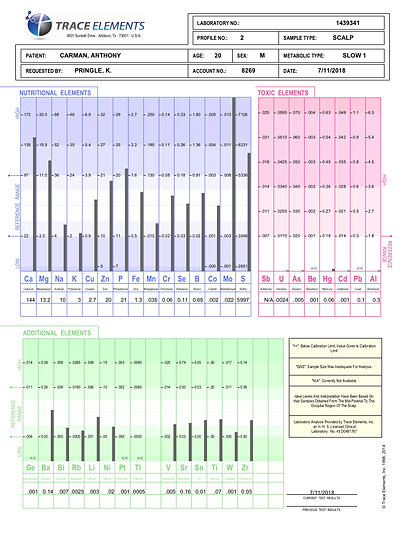 Hair Tissue Mineral Analysis Profile 2